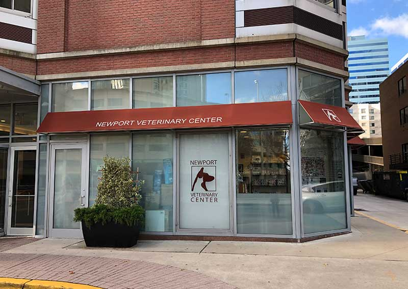 Newport Veterinary Center, Jersey City